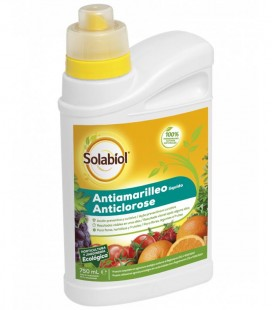 ANTIAMARILLEO SOL 12*750ml