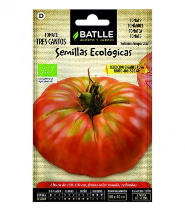 HT TOMATE TRES CANTOS ROSA ECO