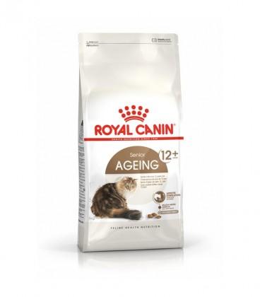 RC CAT AGEING + 12 2-KG