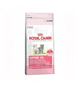 ROYAL CANIN CAT KITTEN 36