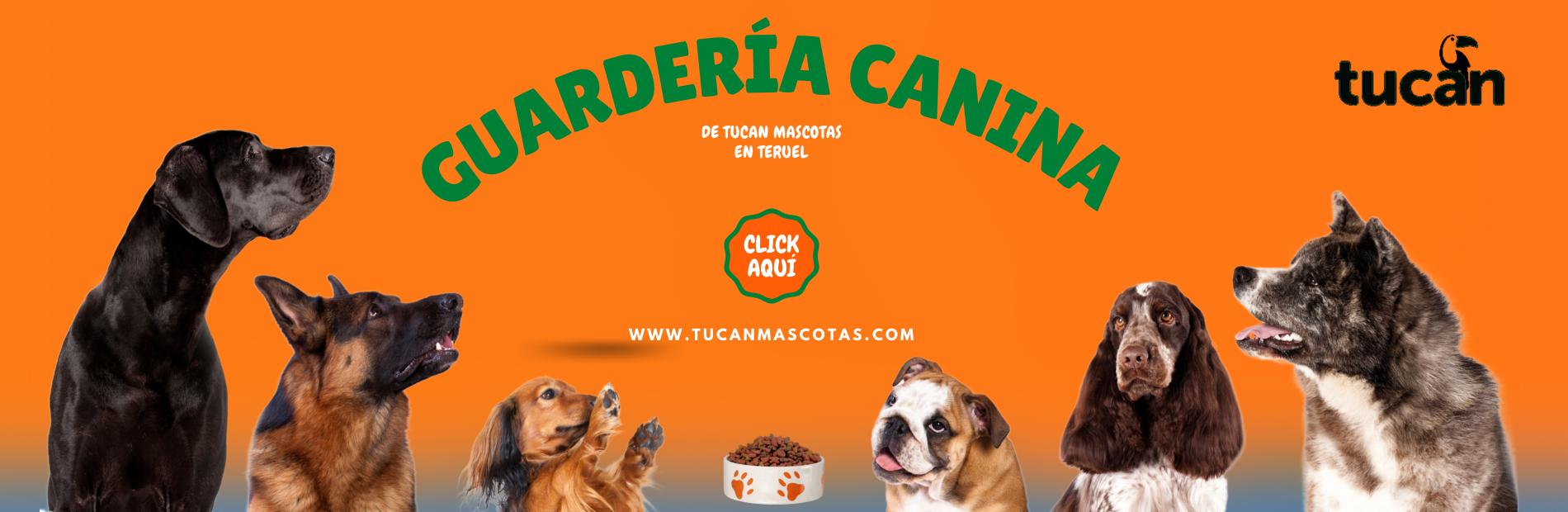 GUARDERIA CANINA TUCAN