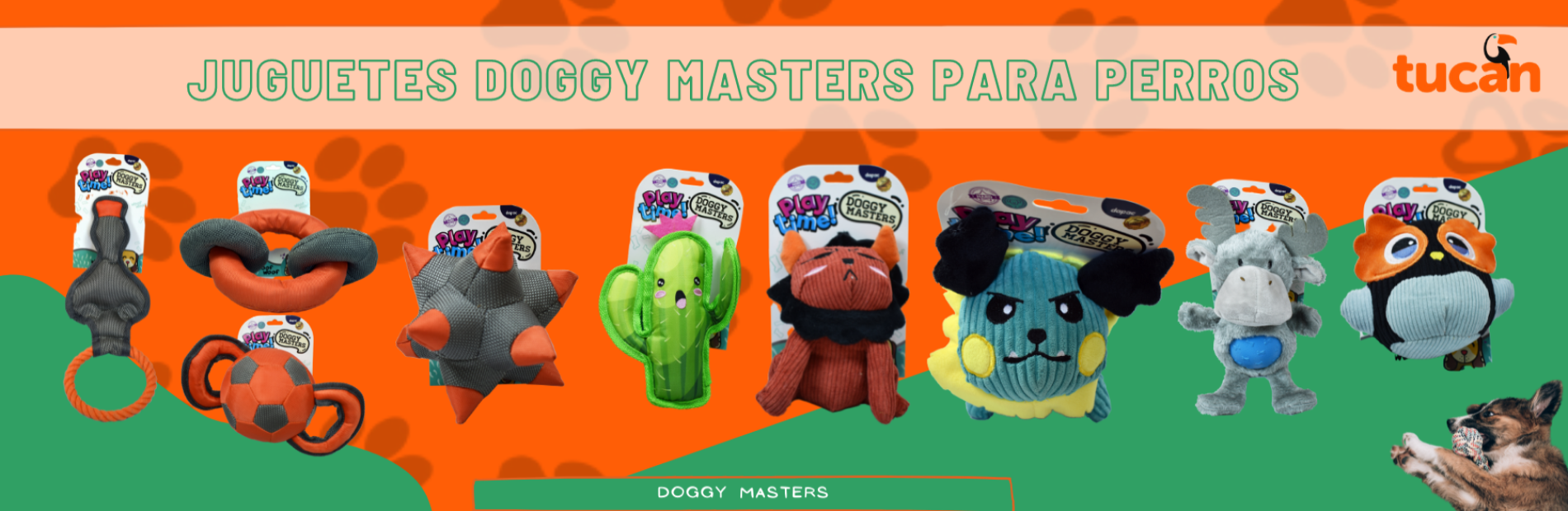 DOGGY MASTERS PERRO