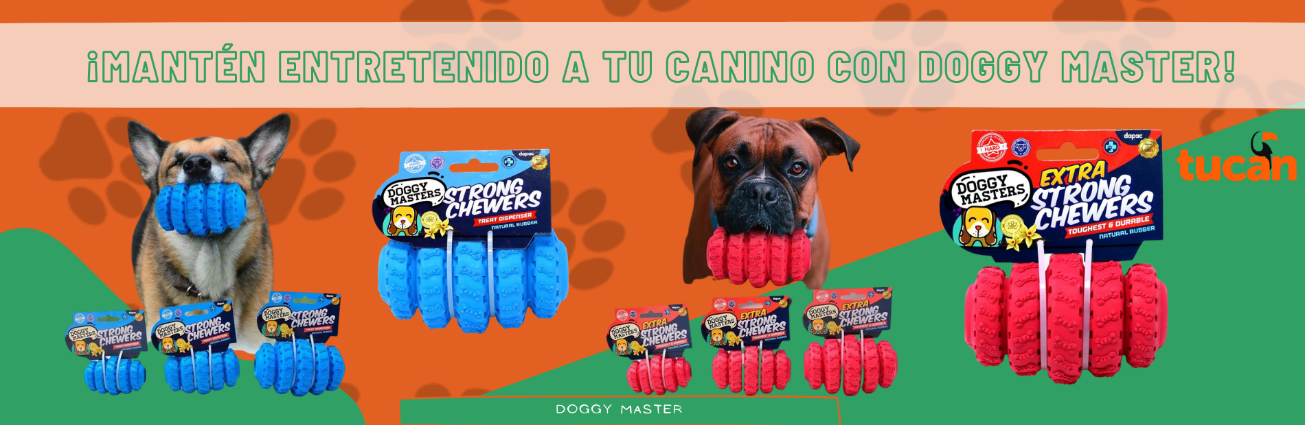 Doggy masters normal perro