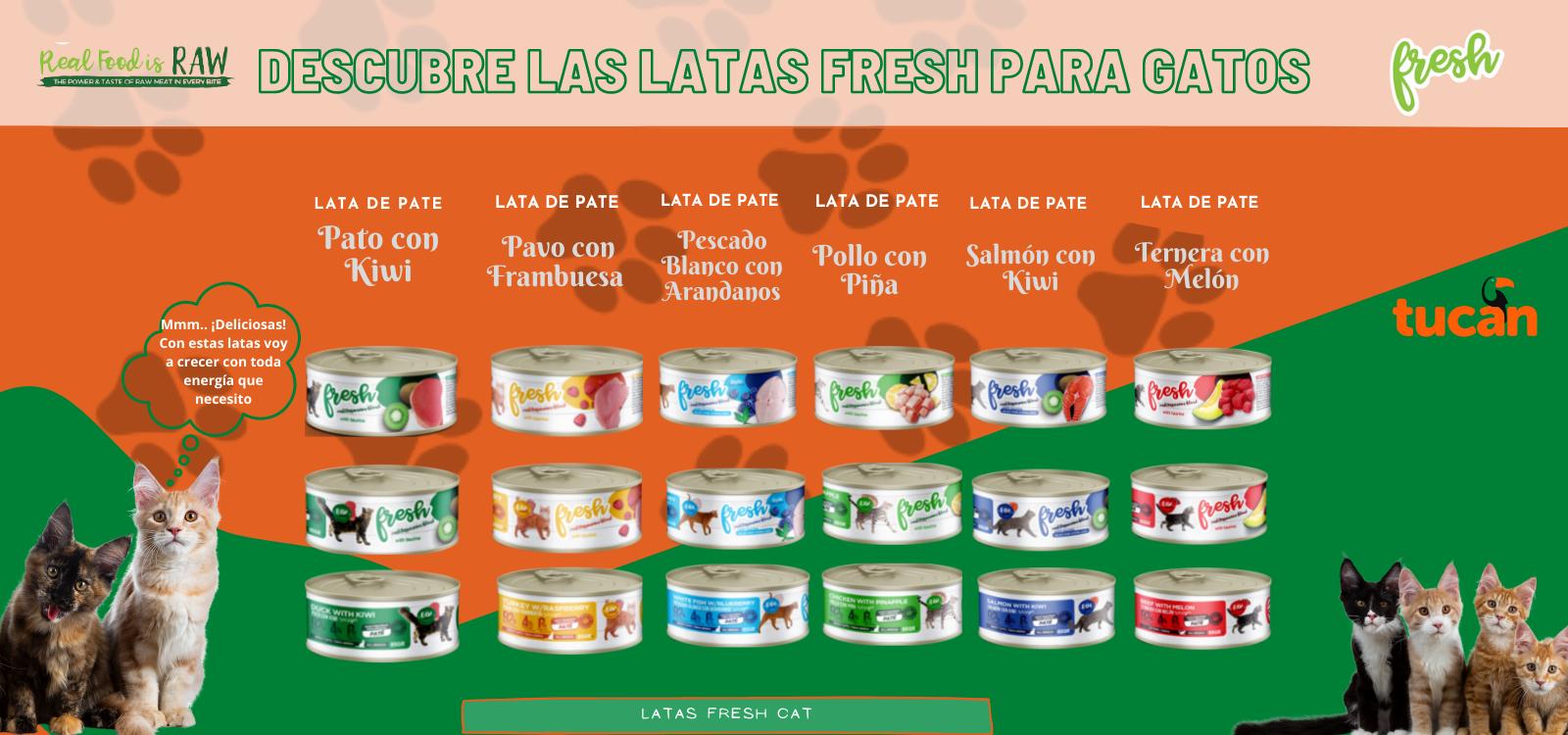 Latas fresh